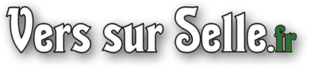 http://www.vers-sur-selle.fr